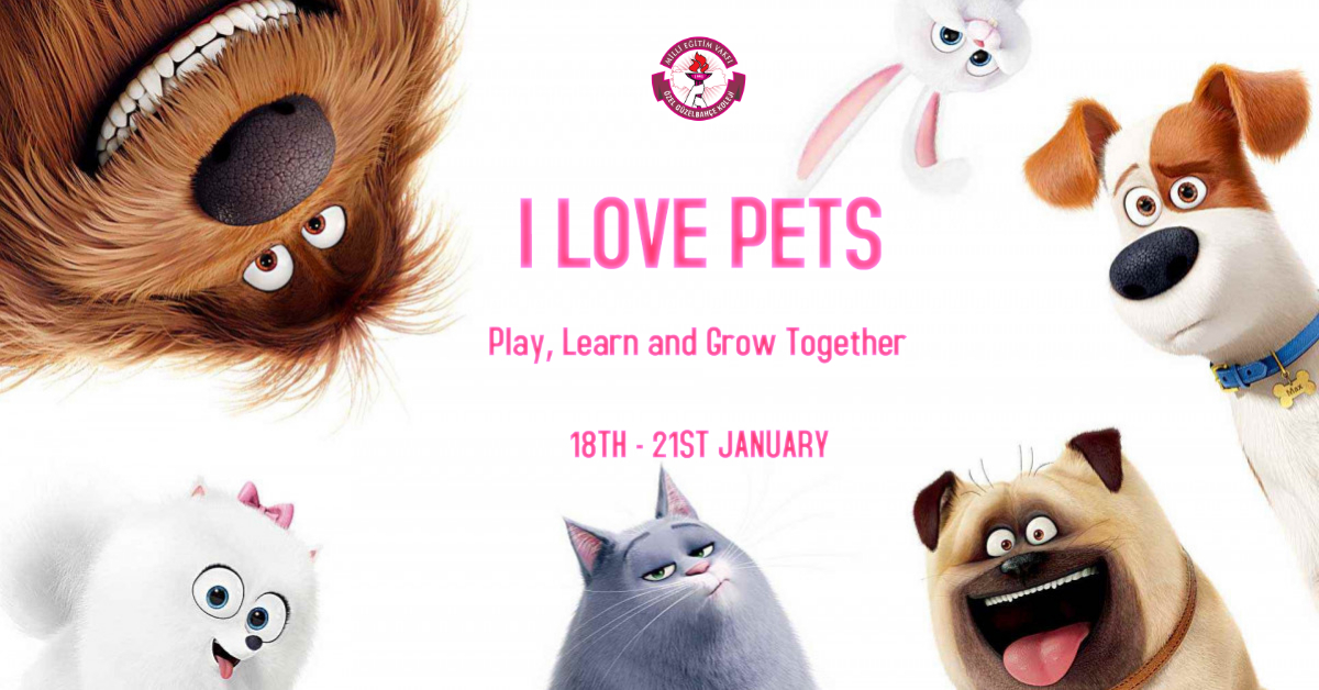 Toys Party & I Love Pets