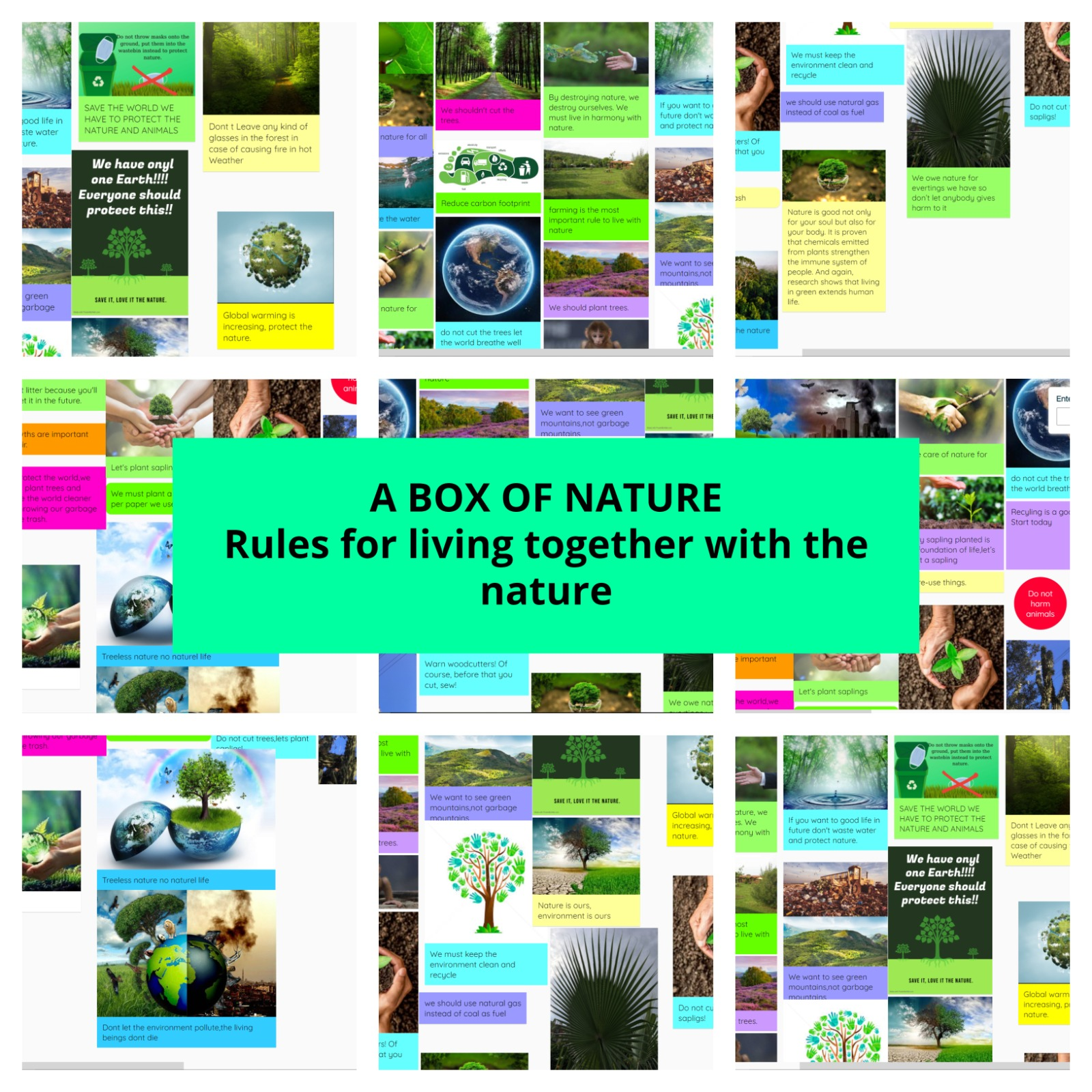 """5 ve 6. Sınıf Öğrencilerimiz """"A Box of Nature"""" eTwinning Projesine Katılıyor"""